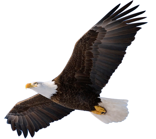 Eagle Representing Home Inspections